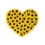 7 Must Do Dating Tips for Spring Fever
