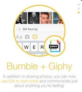 Bumble GIphy