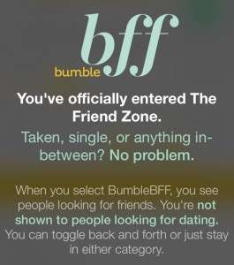 Bumble Friend Zone